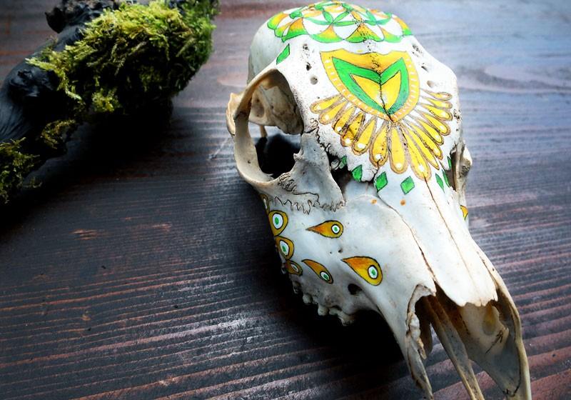 peinture sur os calaveras vanite art chamanique