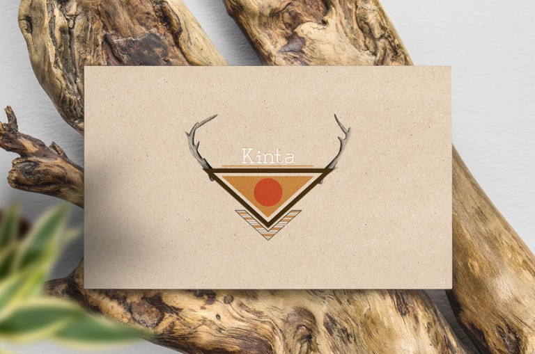 graphiste logo carte de visite design tribal nature