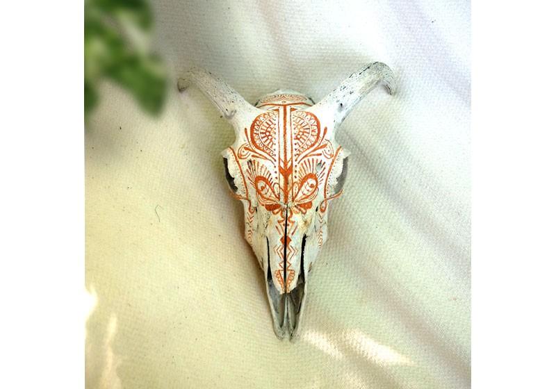crane animal belier motifs dessin peinture chaman